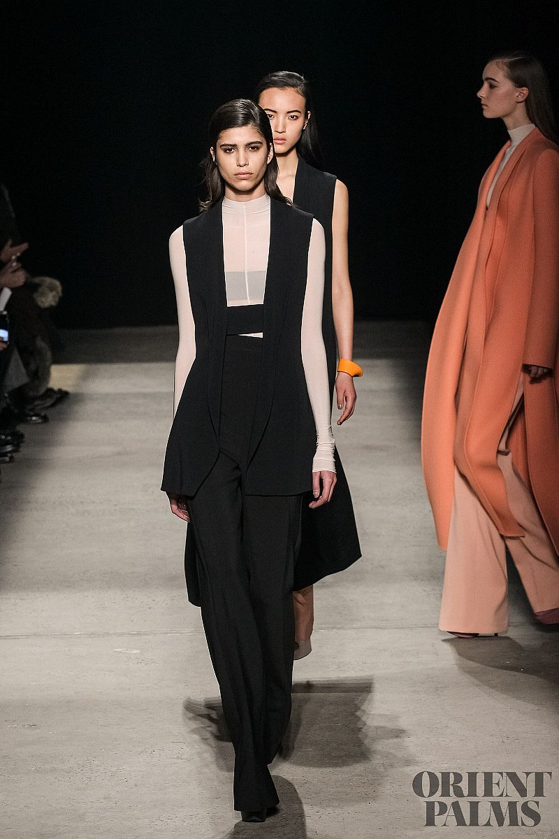 Narciso Rodriguez Fall-winter 2015-2016 - Ready-to-Wear - 1